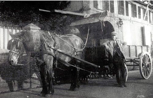 1918-aart-euser