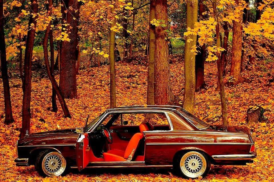 Mercedes-W114-Coupe-1972