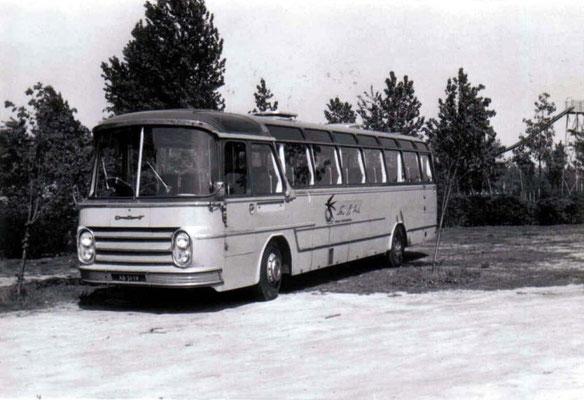 ADV-81