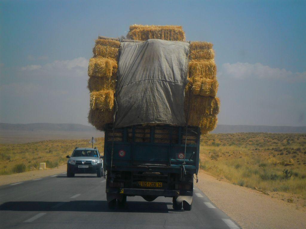 1-8-2017-National-Road-N-23-Aflou-_laghoutat--Sougueur_Tiaret-3