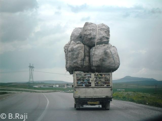 Algeria-Load-Truck[1]