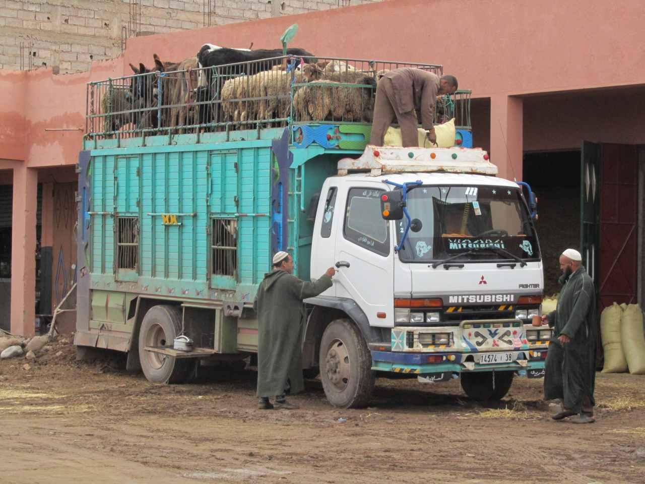 Maroc-Mitsubischi-veetransport[1]