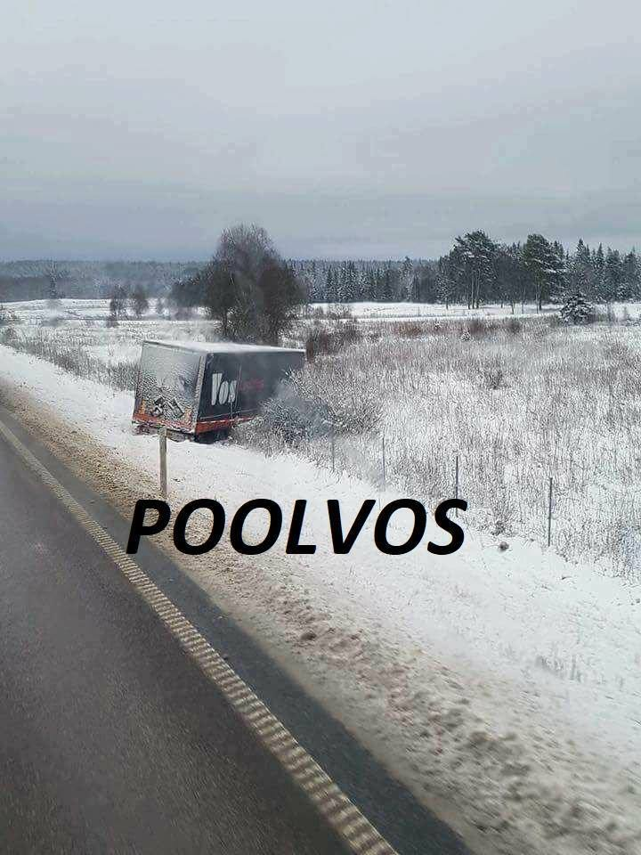 poolvos-10-12-2017