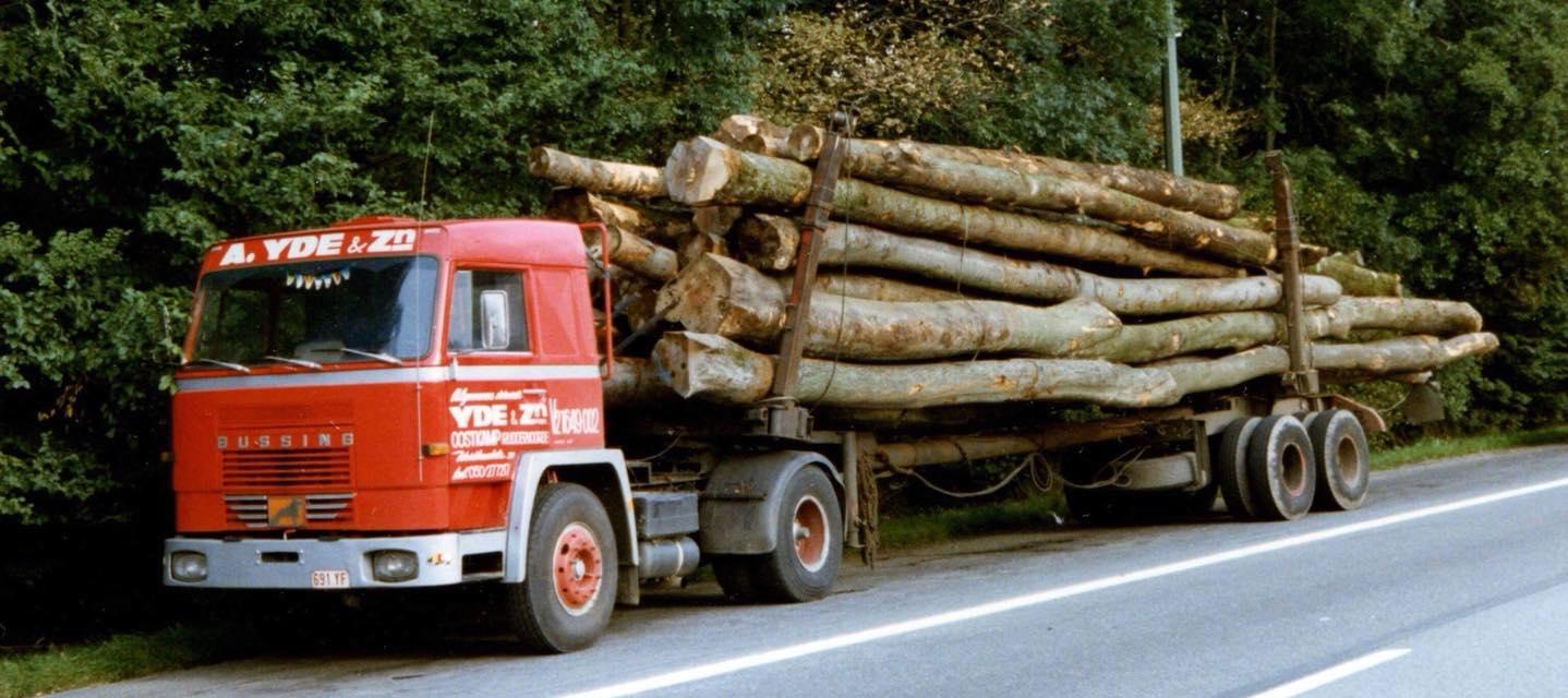 Bussing-hout-wagen