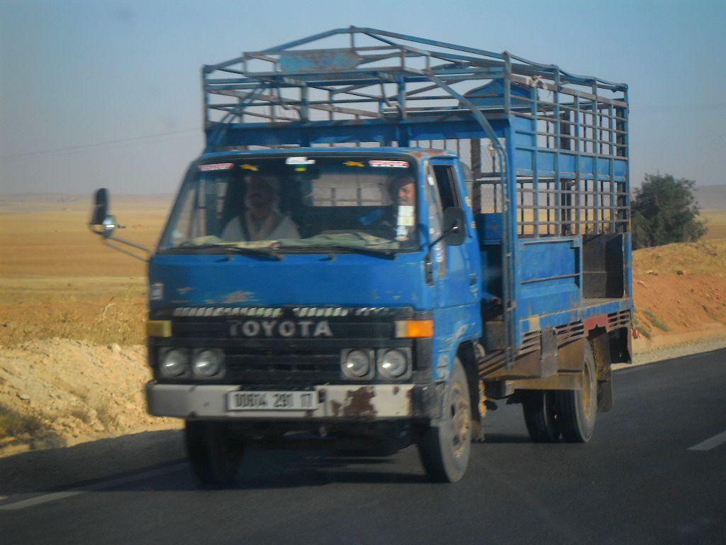 23_8_2012-RN23-Aflou_Laghouat-Sougueur-Tiatet-2-Toyota