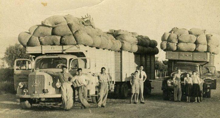 mercedes-312_chevrolet-jaren-1955_60-uit-het-zuiden-van-bahia--argentina