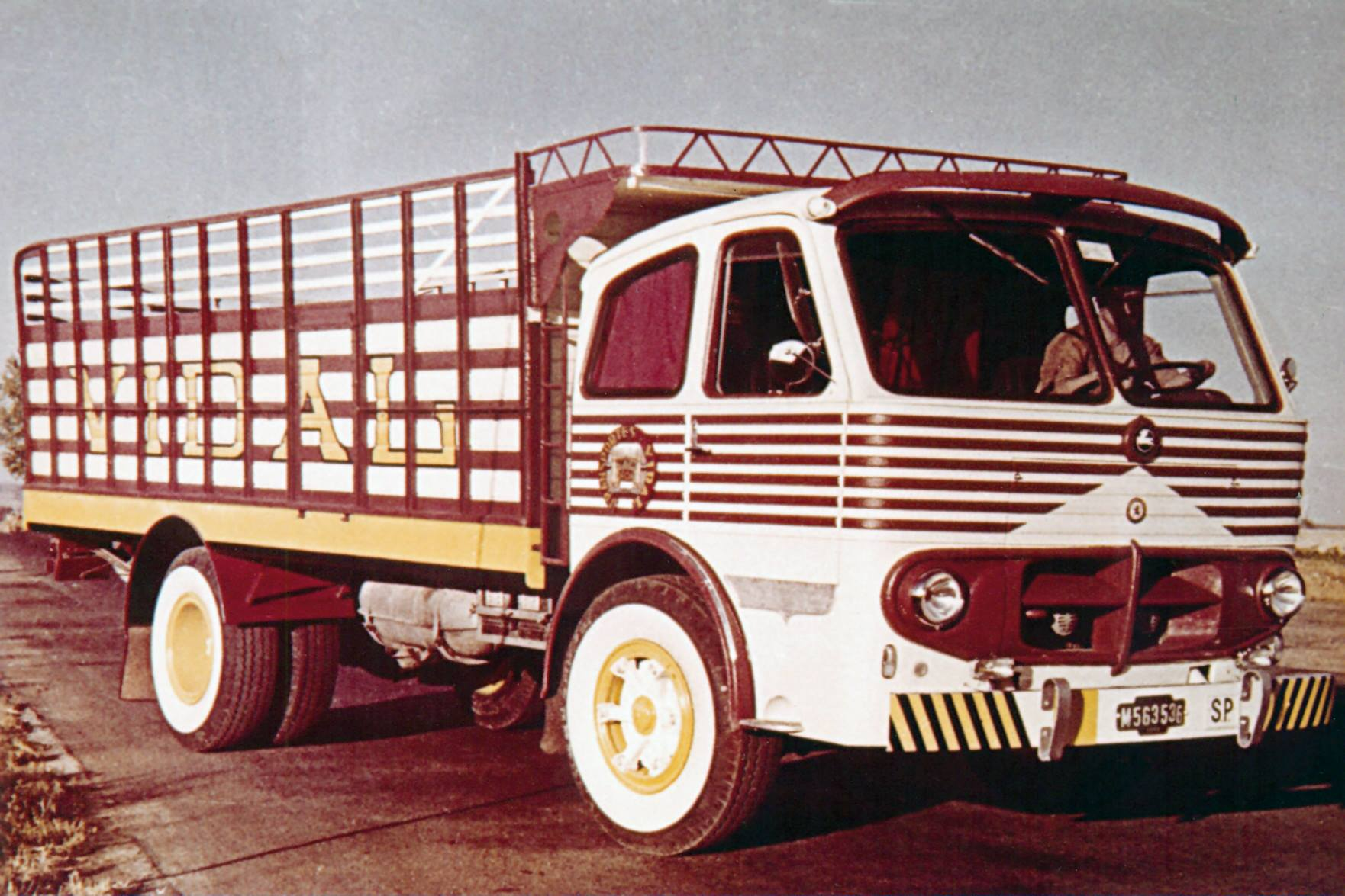 Pegaso-Cabezon-1061-200-CV