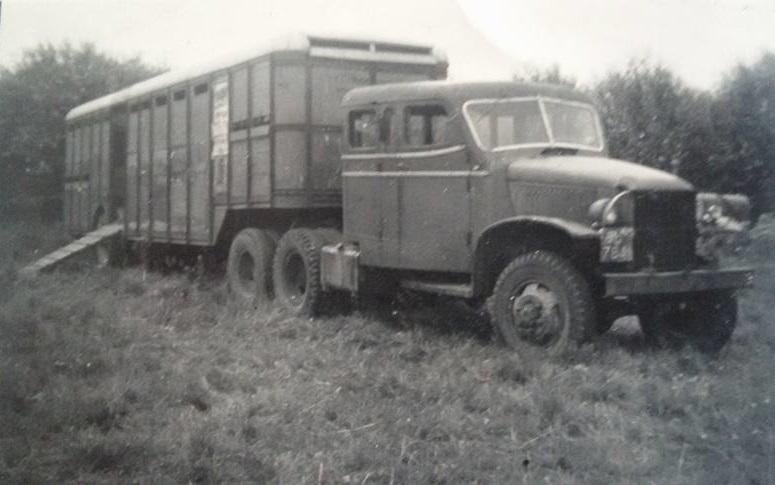 GMC-3