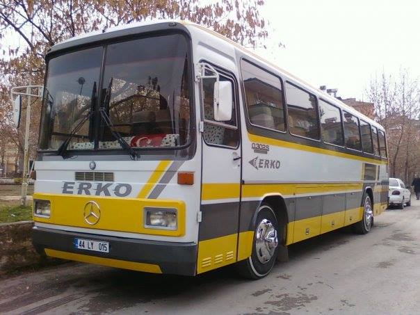 Mercedes-0302-1