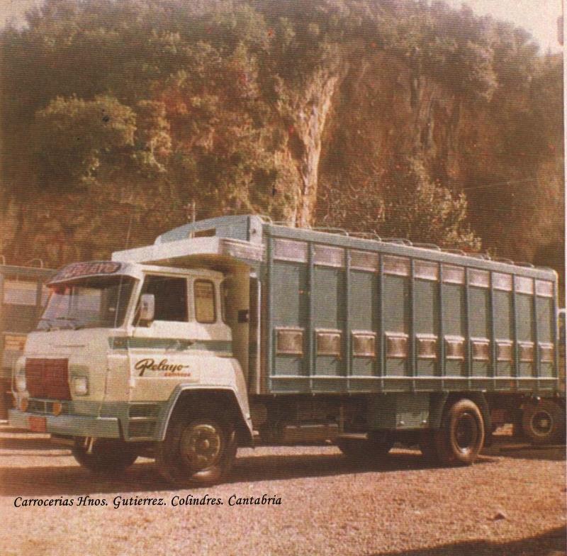 Gutierrez-carr-8