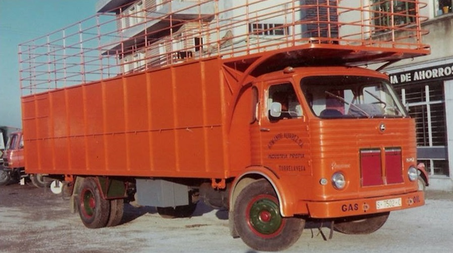 Conrado-33