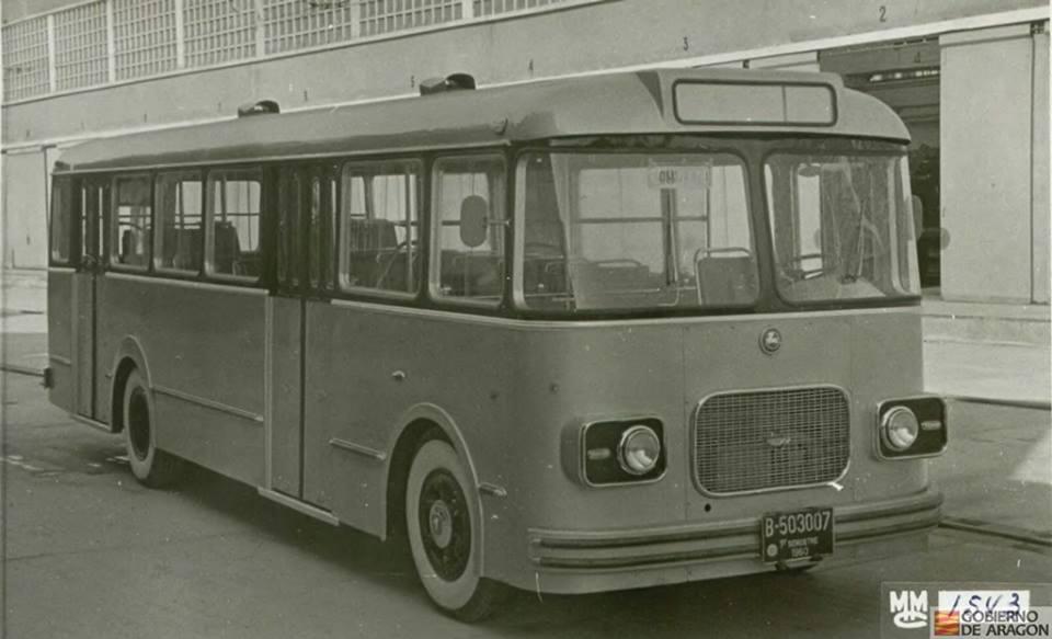 DARA-81