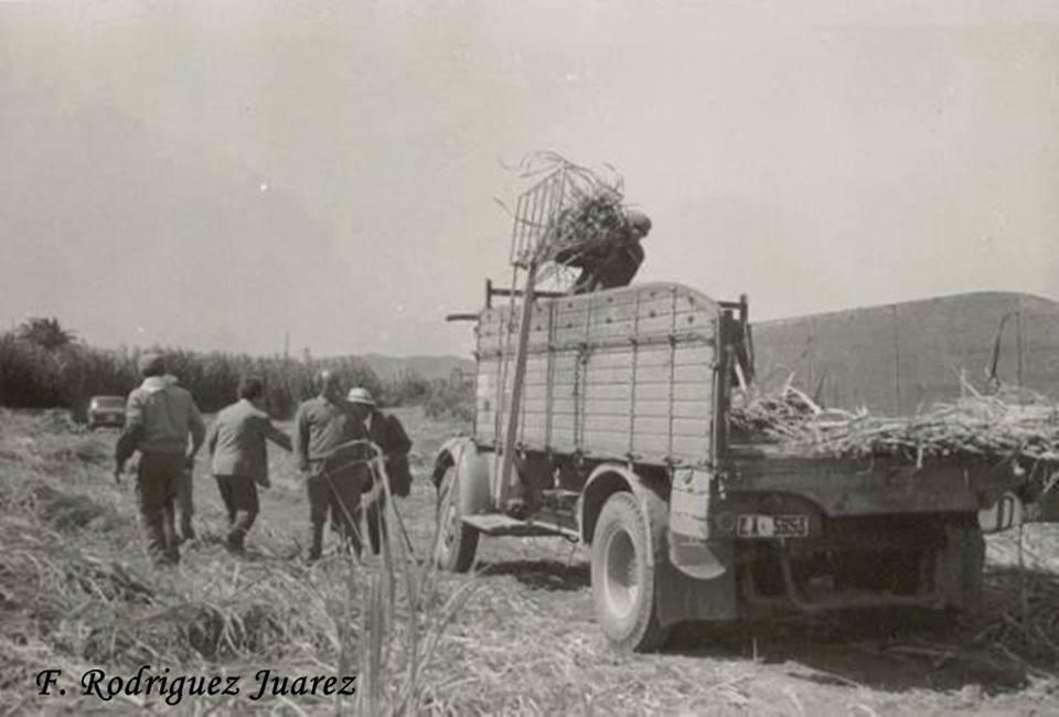 Clasicos-camion-6