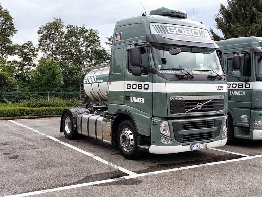 Volvo-Thierry-Dingens