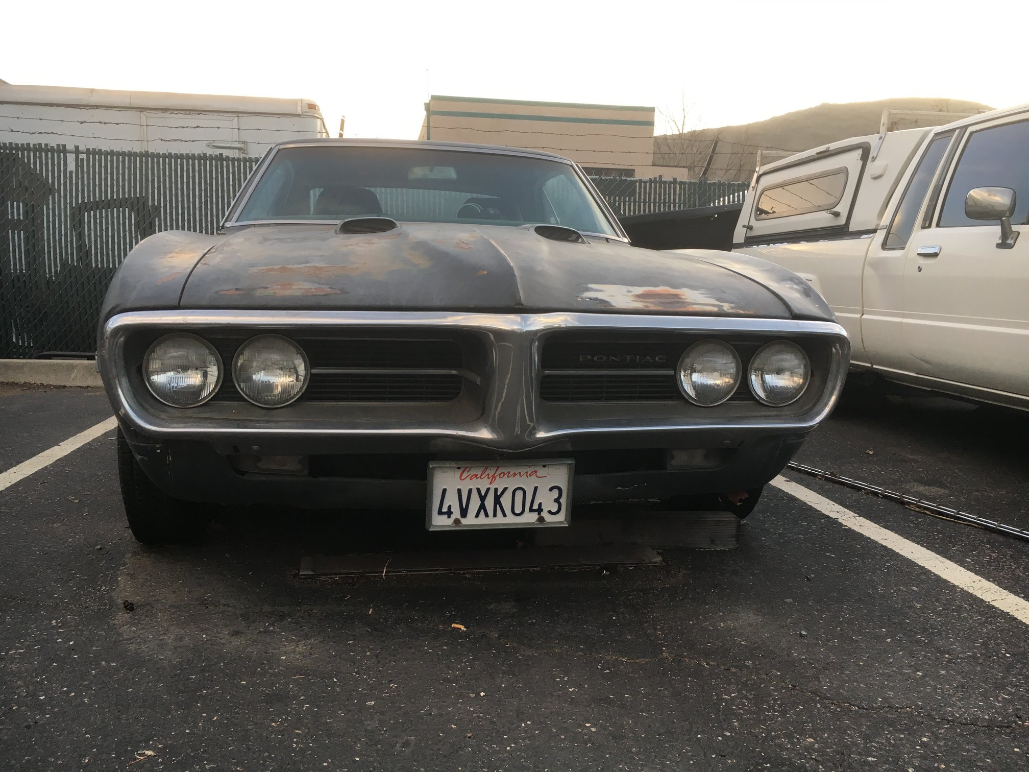 1967-Pontiac-Firebird--American-classics-muscle-car-Dave-Rabin-1