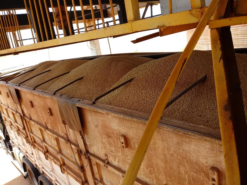 10-10-2018-Kikkererwtenladen---totaal-gewicht-74.500-kg-11
