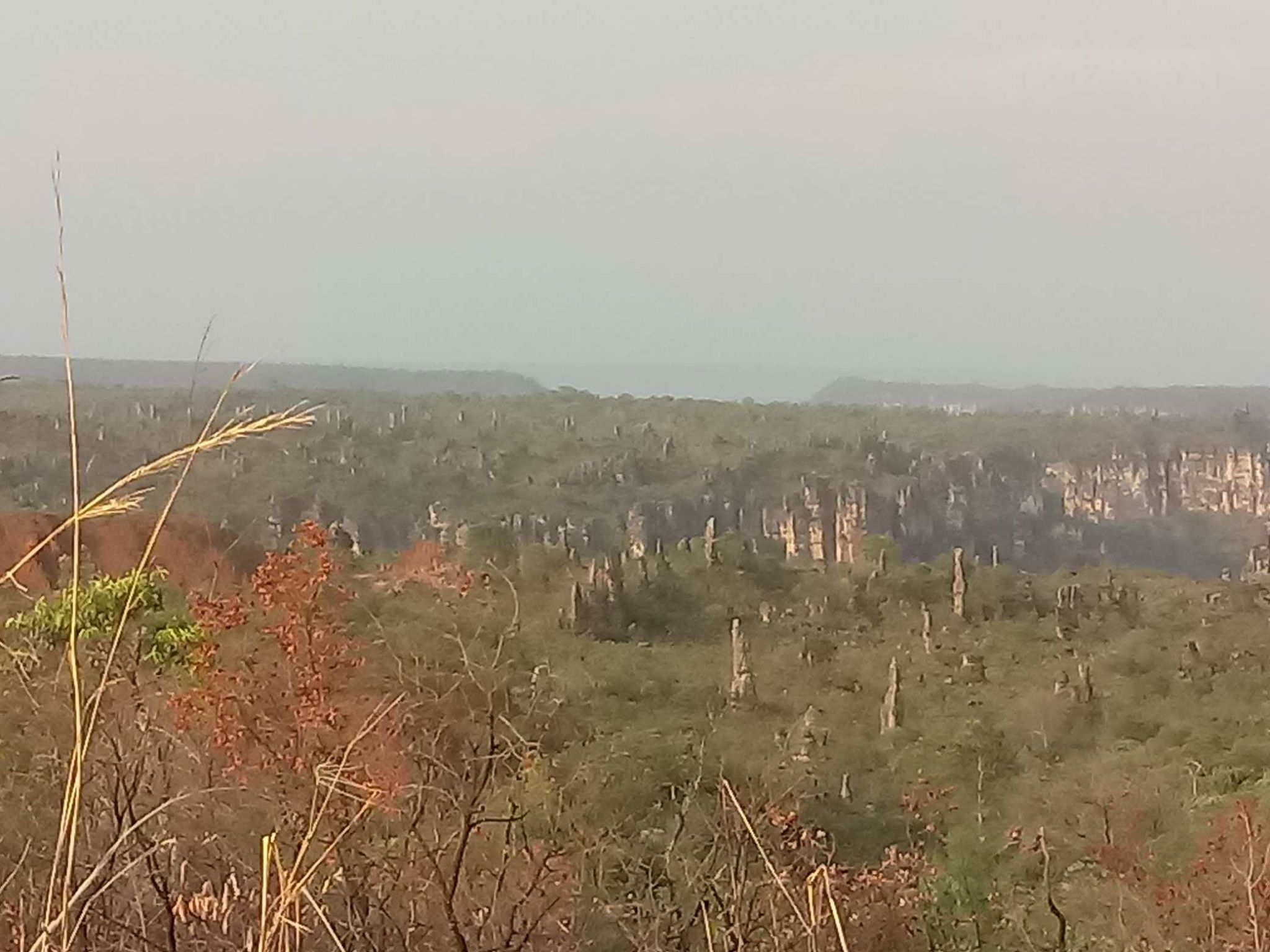 28-9-2018-Caynion-Jalapao-National-park-16[1]