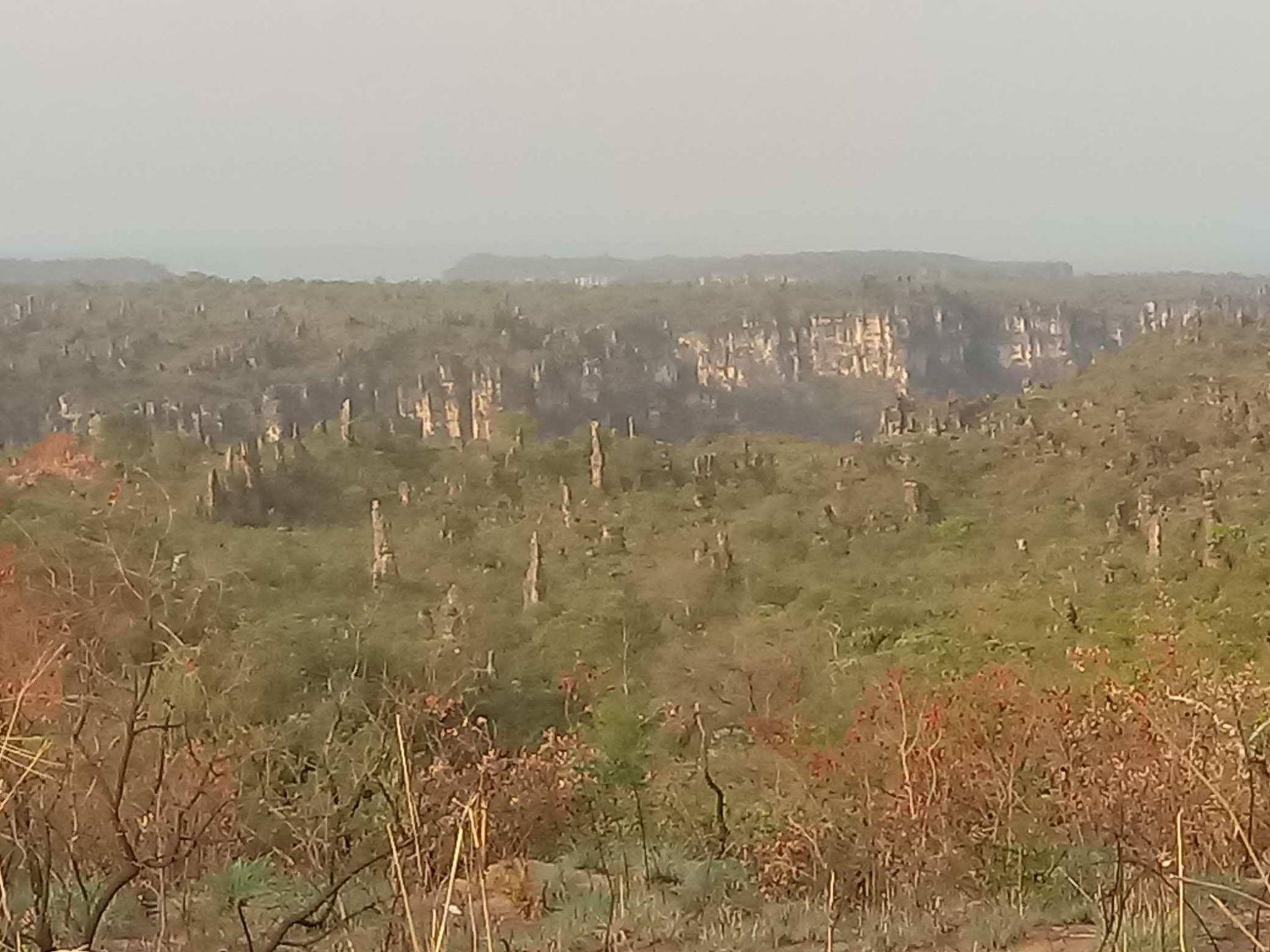 28-9-2018-Caynion-Jalapao-National-park-20[1]