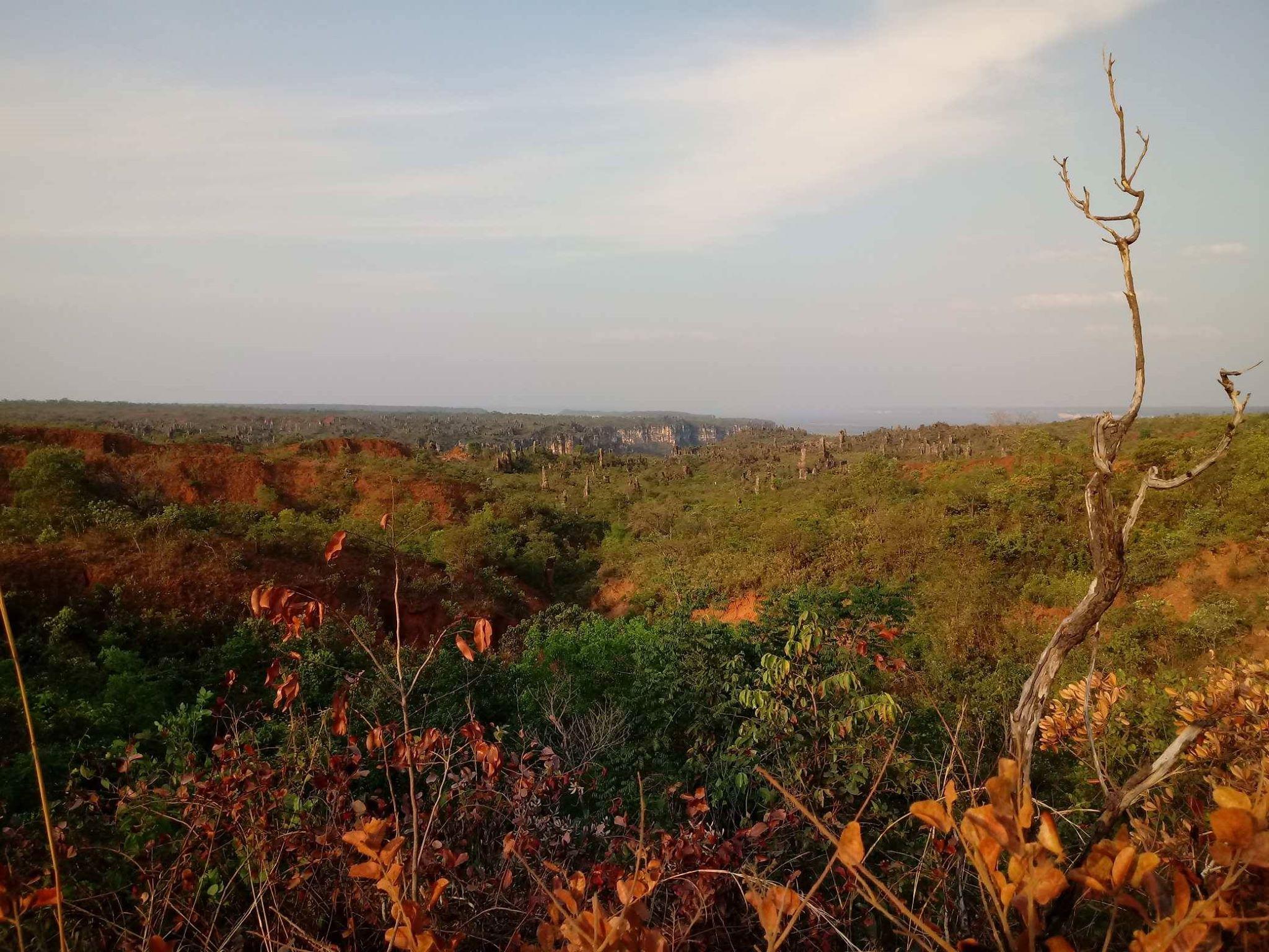 28-9-2018-Caynion-Jalapao-National-park-31[1]