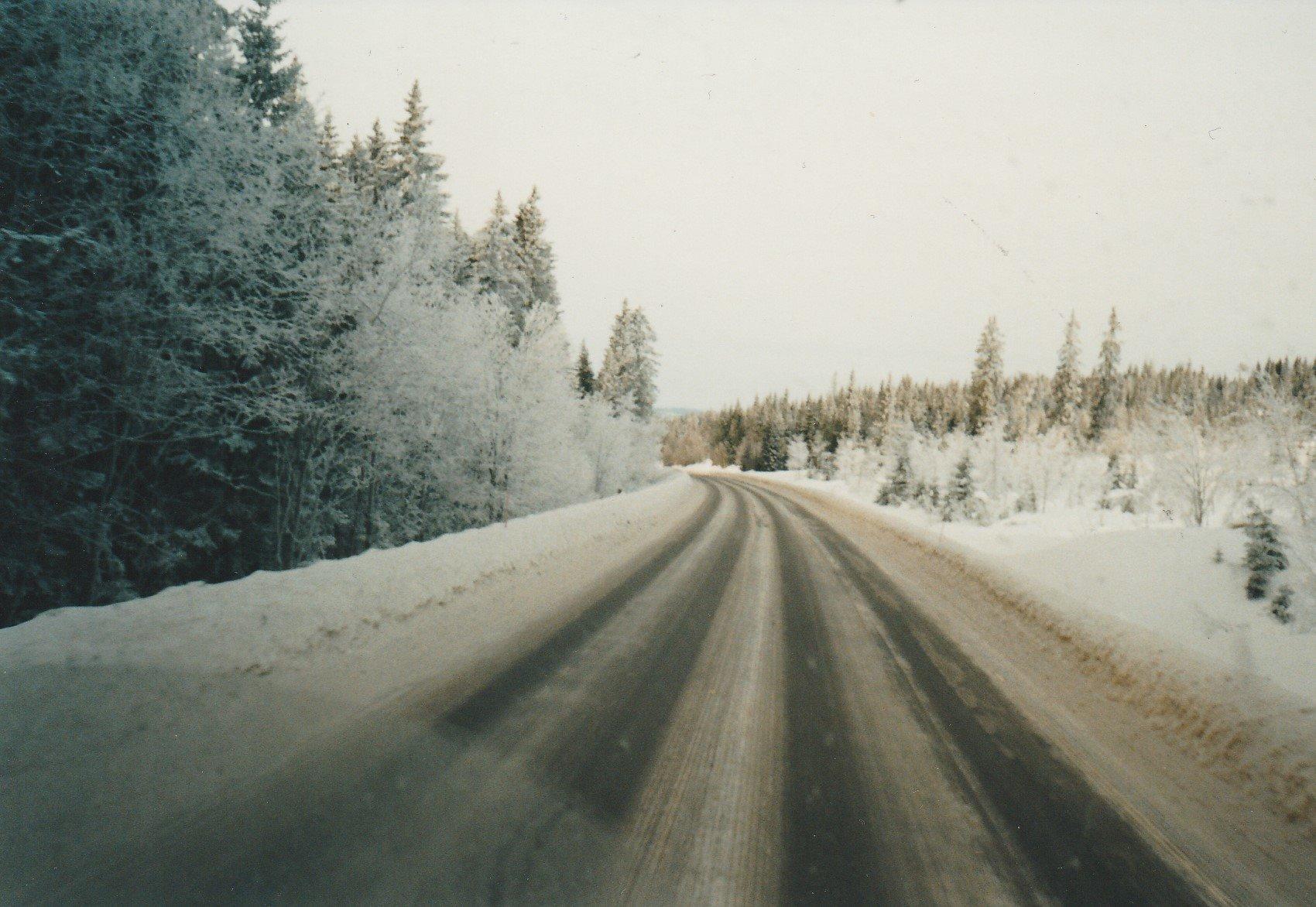 Hans-Anthonise--Een-Italie-ganger-verdwaald-in-Trysil-Noorwegen.-Tussen-Hamar-en-Trysil--23-graden-celcius--Hout-geladen-voor-Nederland--Midden-in-een-wintersportgebied--bij-de-skiliften7