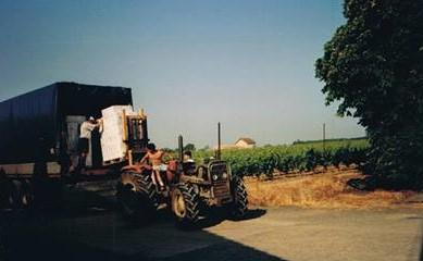 de-moderne-heftruck-van-het-wijnboertje