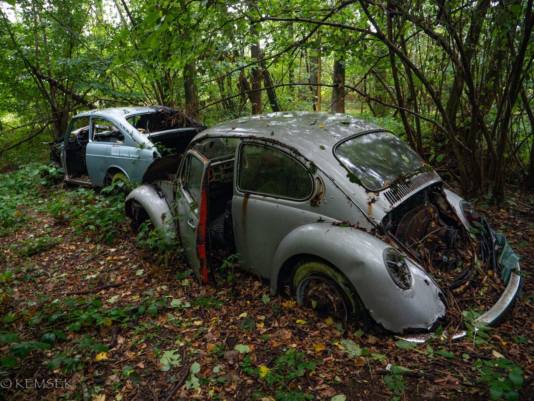 VW-in-rust-12