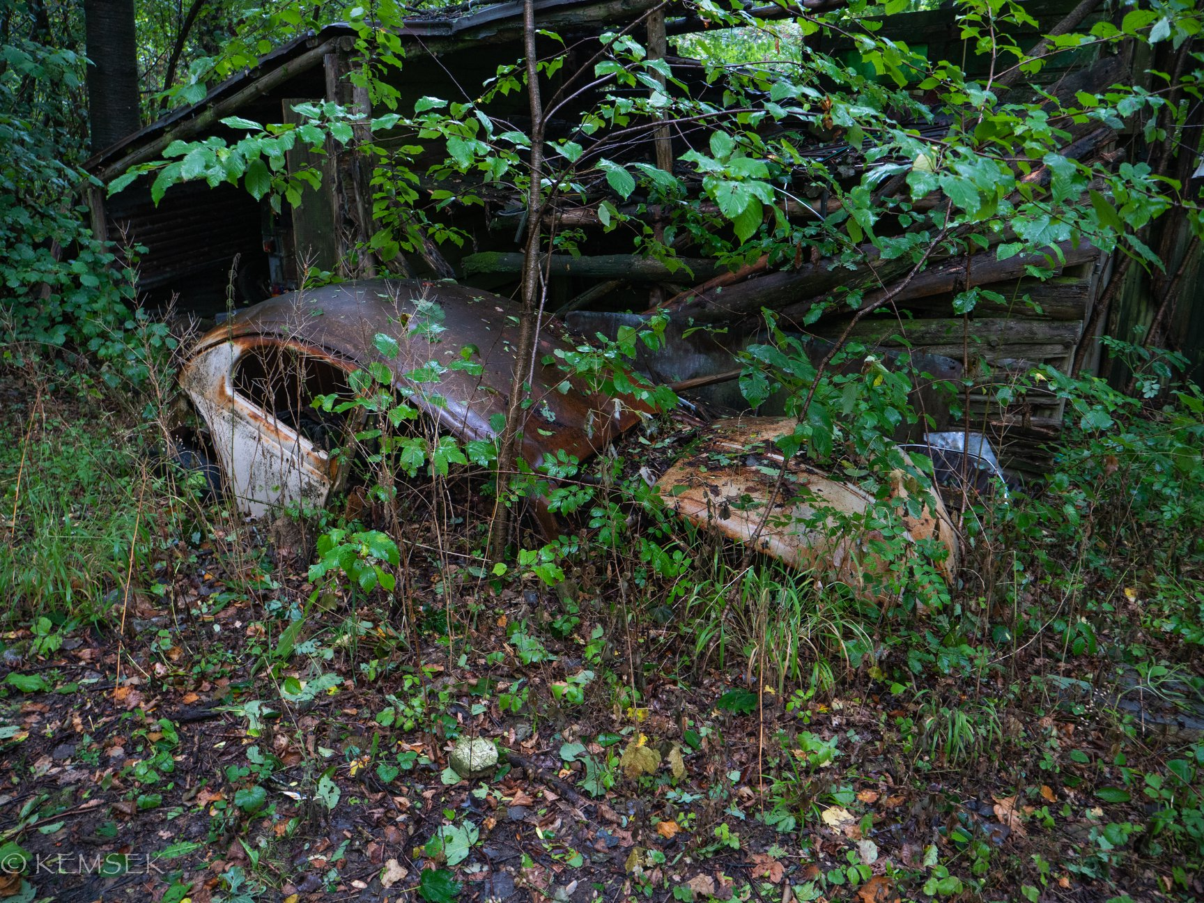 VW-in-rust-13