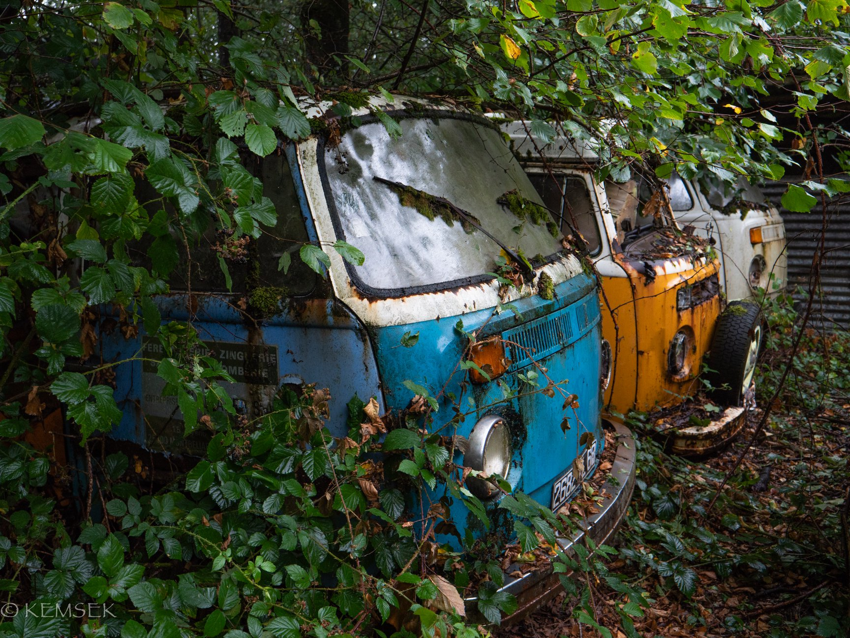 VW-in-rust-14