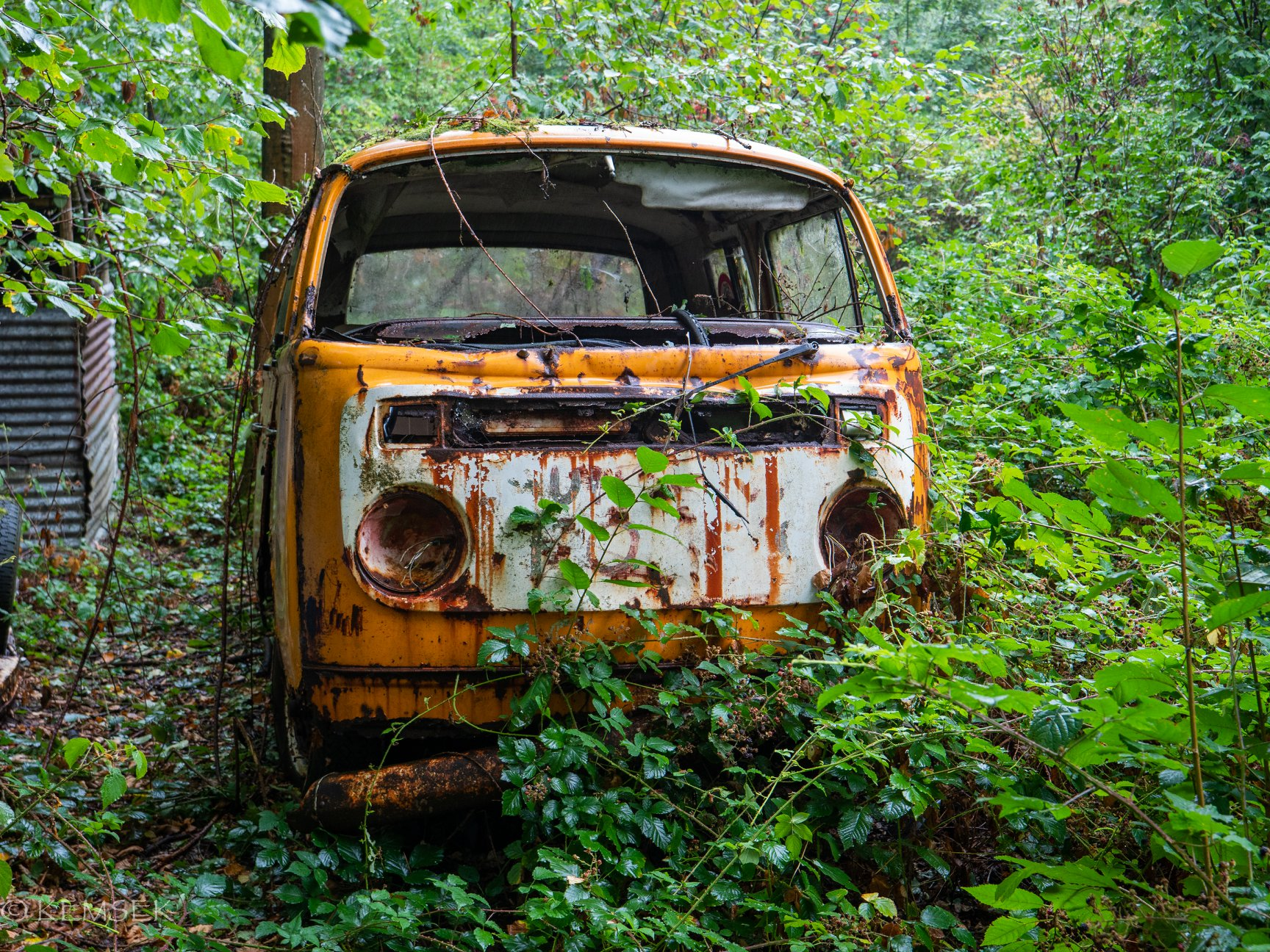 VW-in-rust-16