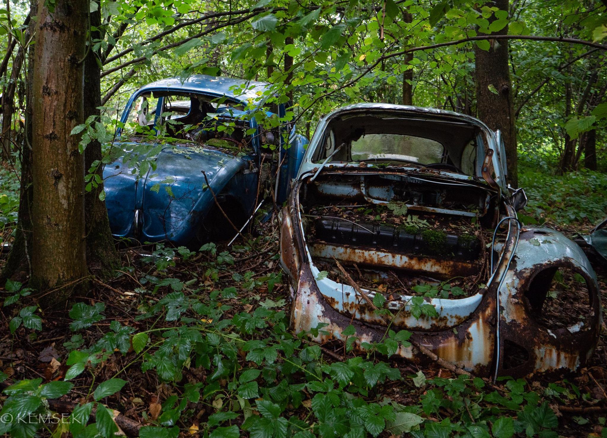 VW-in-rust-17