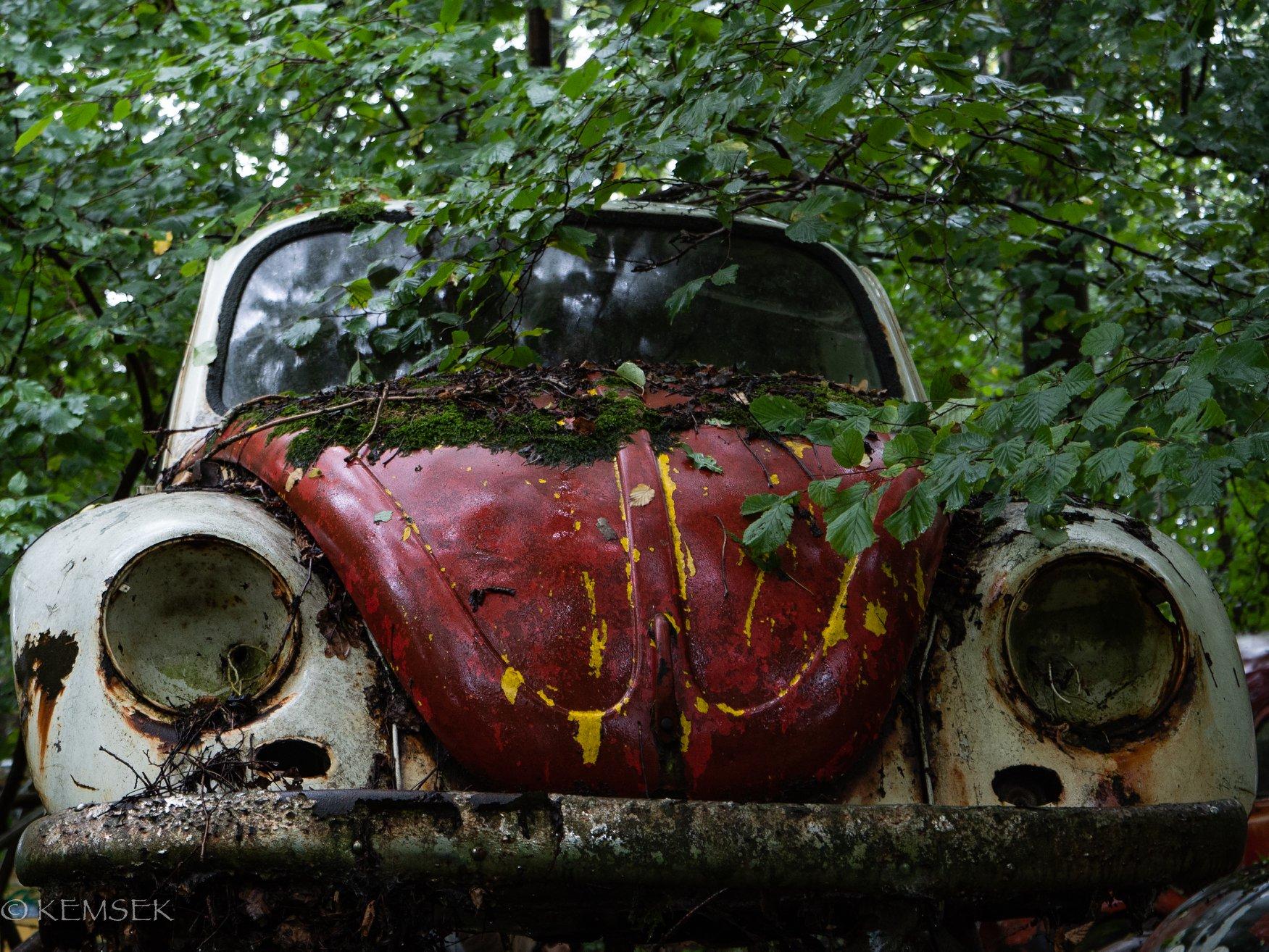 VW-in-rust-2