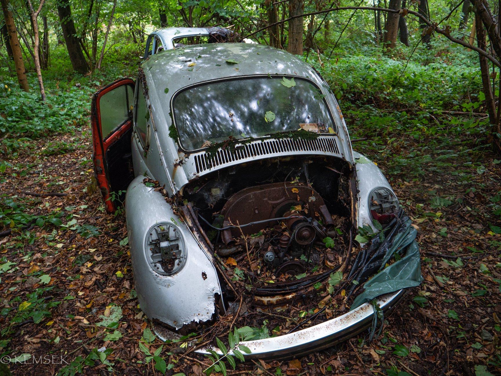 VW-in-rust-3