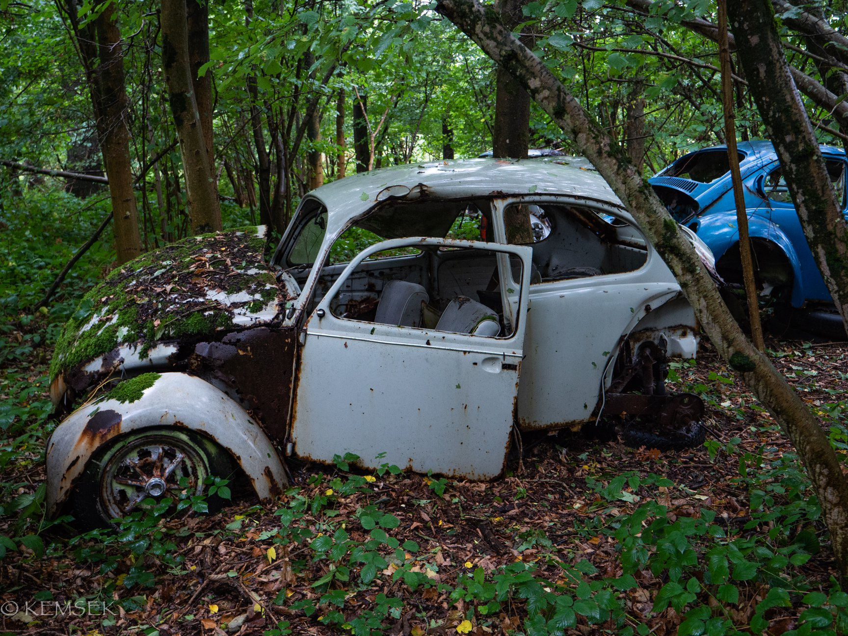 VW-in-rust-3