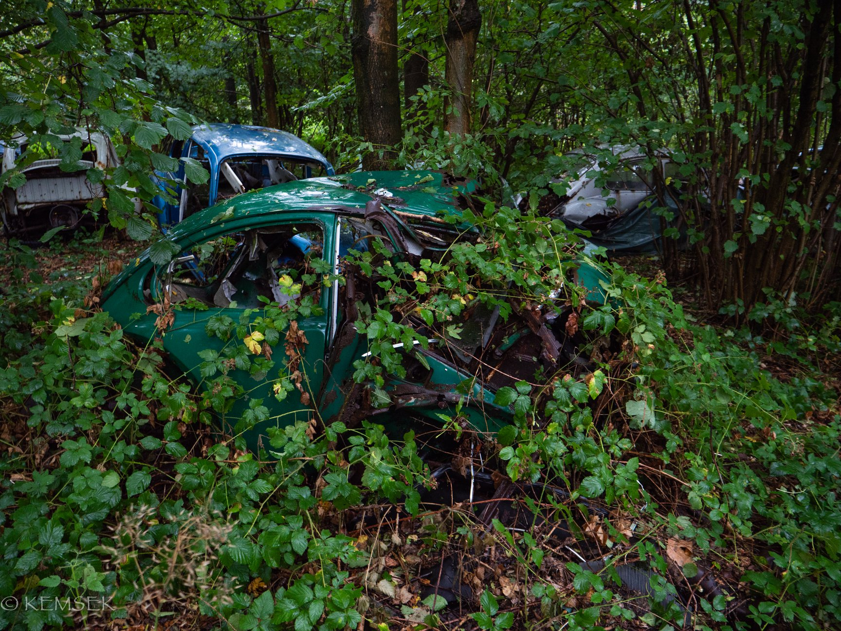 VW-in-rust-6
