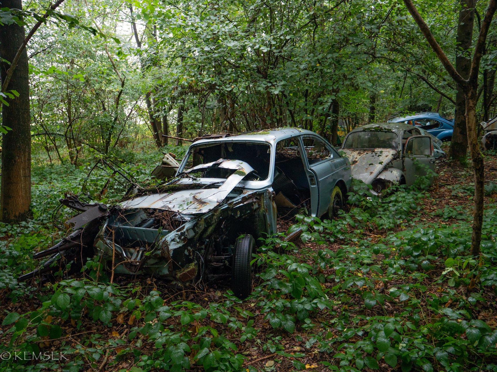 VW-in-rust-9