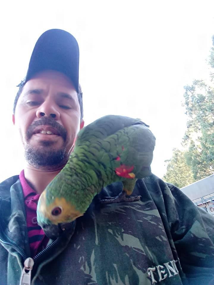 Gilberto--com-pequeno-papagaio-