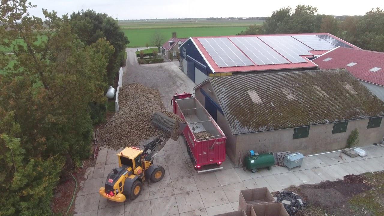 3-oktober-2018--suikerbieten-laden-op-Harryfarm-