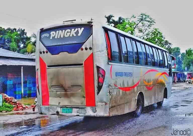 Mix-Coaches-Bengali-37