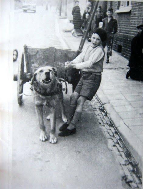 1954-Herman-Bouwens-met-zijn-karhond-
