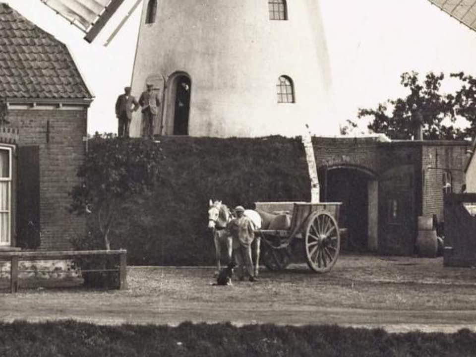 Meeltransport-Piet-Schoorl-archief-(3)
