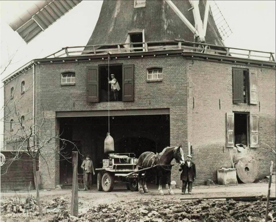 Meeltransport-Piet-Schoorl-archief-(5)