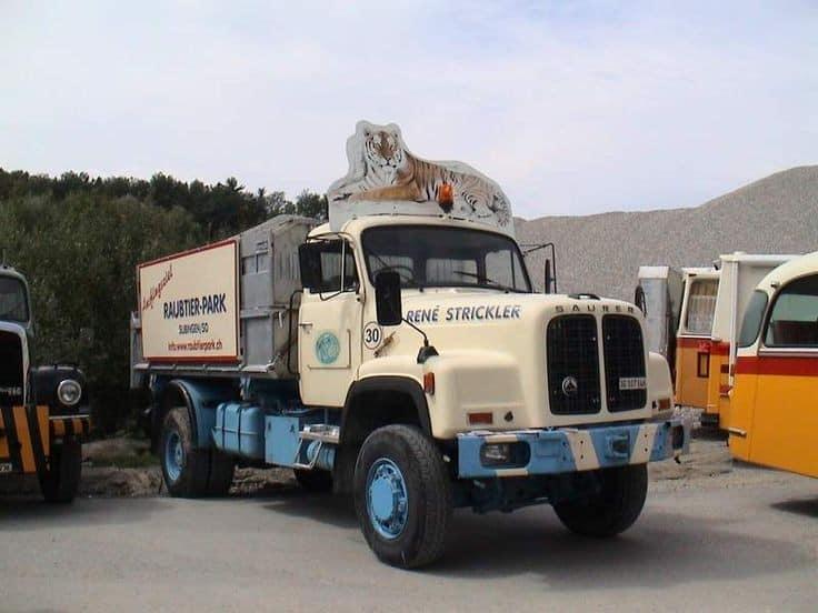 Saurer-Diesel--(31)
