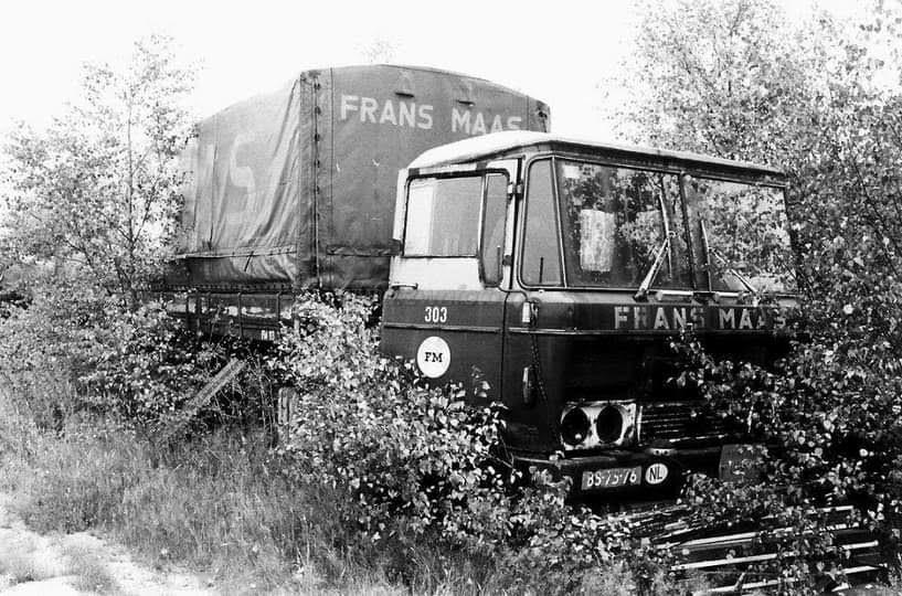 Daf-compleet-met-trailer-in-rust
