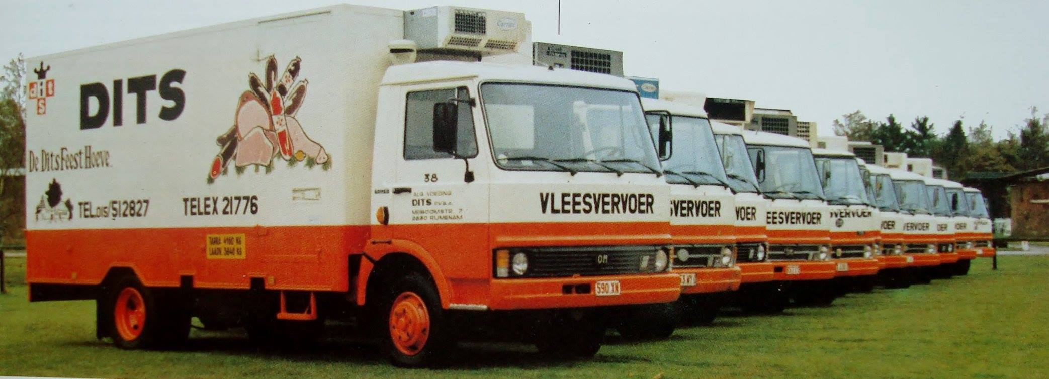 Dits-Vleesvervoer