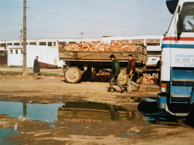 Bacou-Kippen-slagerij-Jos-Janssen-foto
