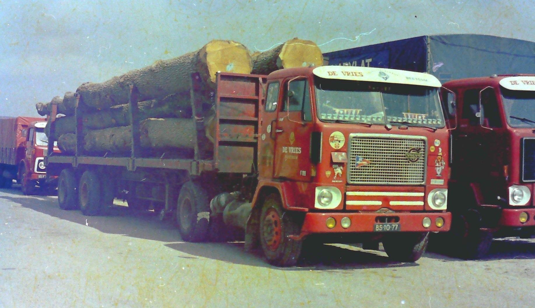 Volvo-bomen-trailer-voor-grote-bomen-uit-Frankrijk-voor-Talens-poloden-fabriek--2