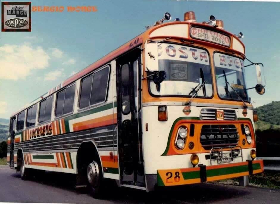 Buses-Tuning-24