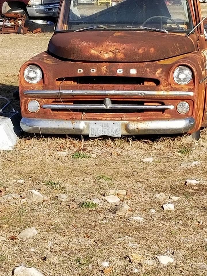 Harvey-Metcalf--Lost-diamond-1957-Dodge-V8