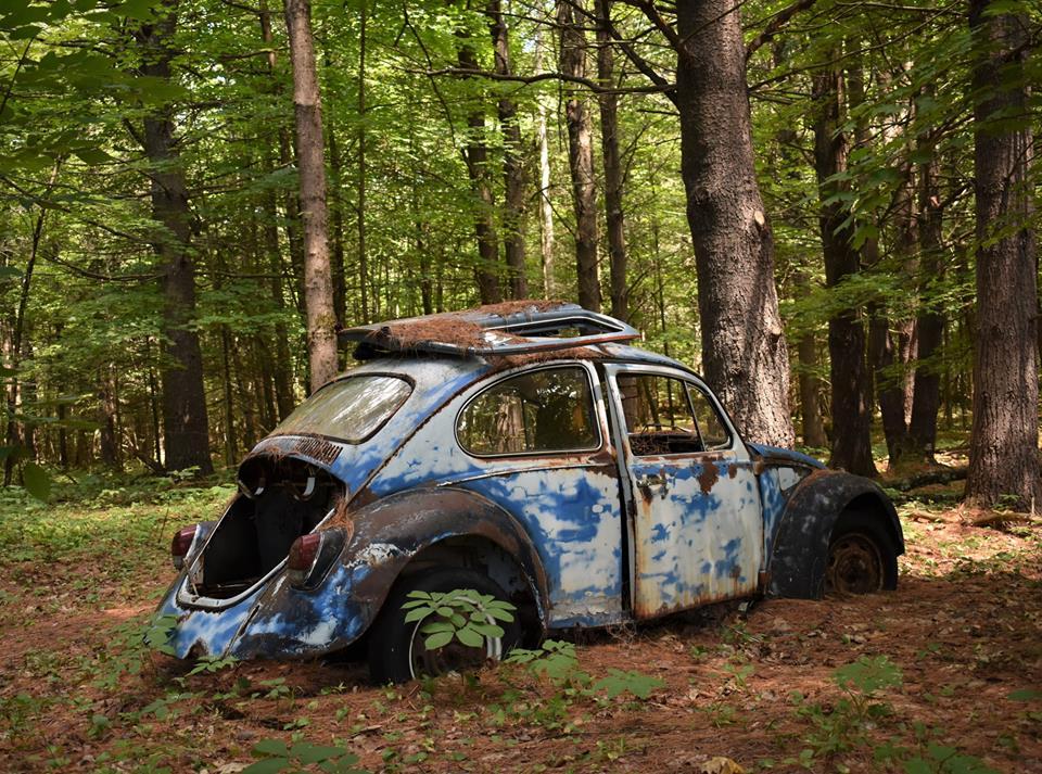VW-Scott-Crocker