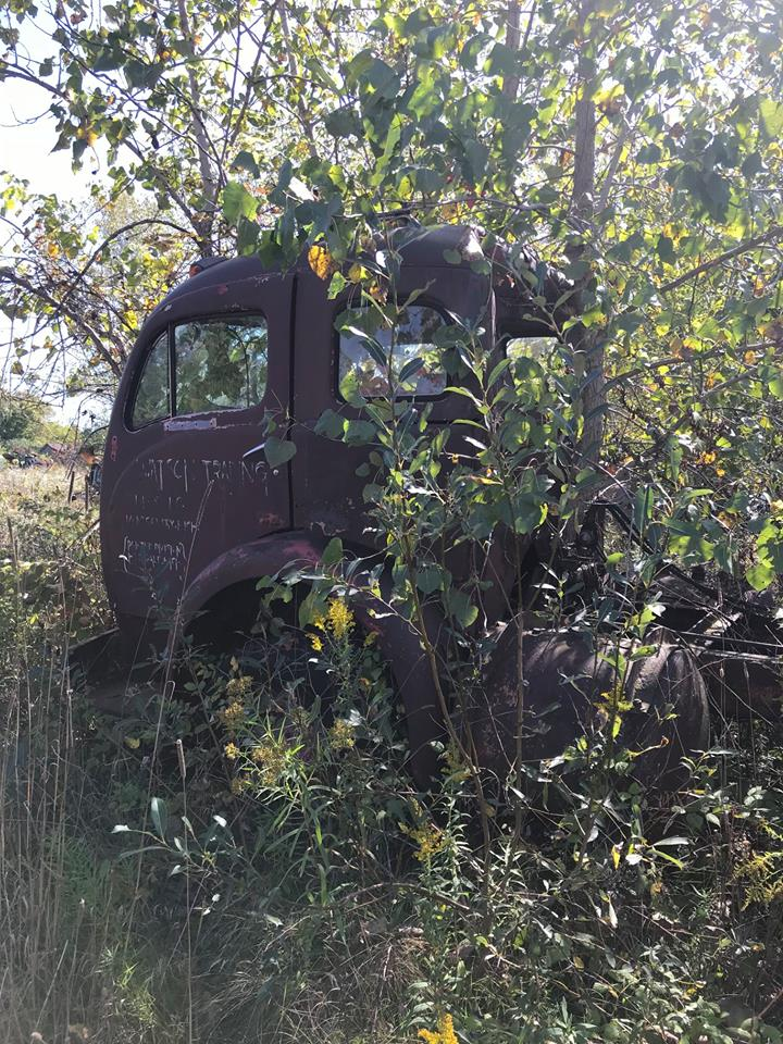 Old-truck-in-wood-2